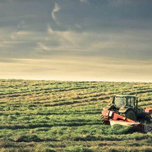 farm-gallery-img-2